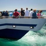 Optimum Viewing Aboard Our Catamaran