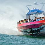 CODZILLA Thrill Boat Ride