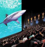 IMAX Theatre's Giant Screen