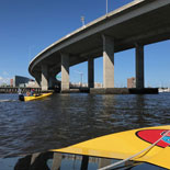 Be your own captain as you tour Charleston Harbor