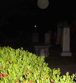 Oooooo! There's a Graveyard Ghost