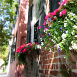 Tour Charleston's Historic District