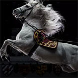 Medieval Times Showcases Live Equestrian Mastery