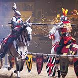 Battle of Champions