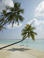 Key West - Island Paradise