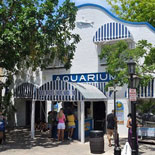 Key West Aquarium: Key West's First Attraction