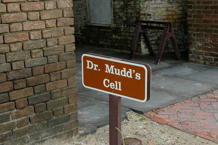 Visit Dr Mudds Cell