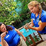 Key West Aquarium Virtual Tour