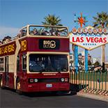 Big Bus Hop-On / Hop-Off Tour