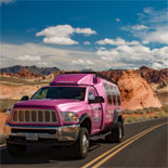 Valley of Fire Tour: Explore the natural side of Las Vegas!