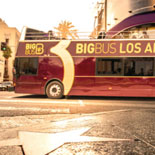 Big Bus Los Angeles- 1 Day Classic Ticket