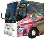 The Disneyland Resort Express