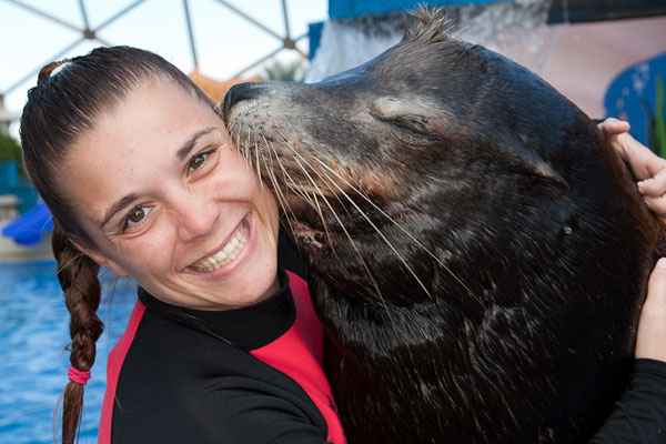 Sea Lion with his Trainer