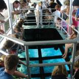 Key Largo Princess Glass Bottom Boat Cruise