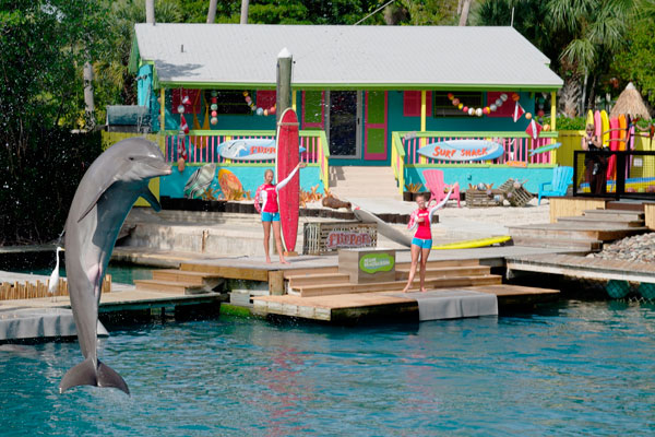 Flipper Show at Miami Seaquarium