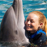 Touch the Dolphins