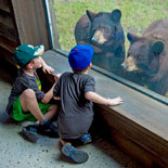 Zoo Miami is the ideal place for an individual, a couple, or an entire family.