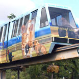 Includes All day Monorail