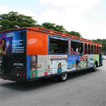 2 Day Naples Trolley Tours