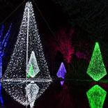 Savor the sights and sounds of the season at Cheekwood