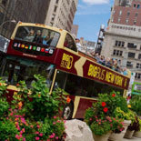 Big Bus Tours of New York