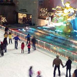 View the  world-famous Skating Rink during the Winter
