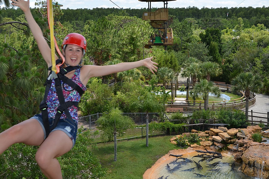 Screamin' Gator Zip Line