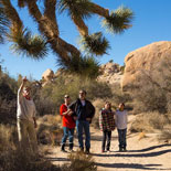 Learn About the Desert's Plants