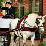 Philadelphia Carriage Tour - Philadelphia 20 Minute Carriage Tour