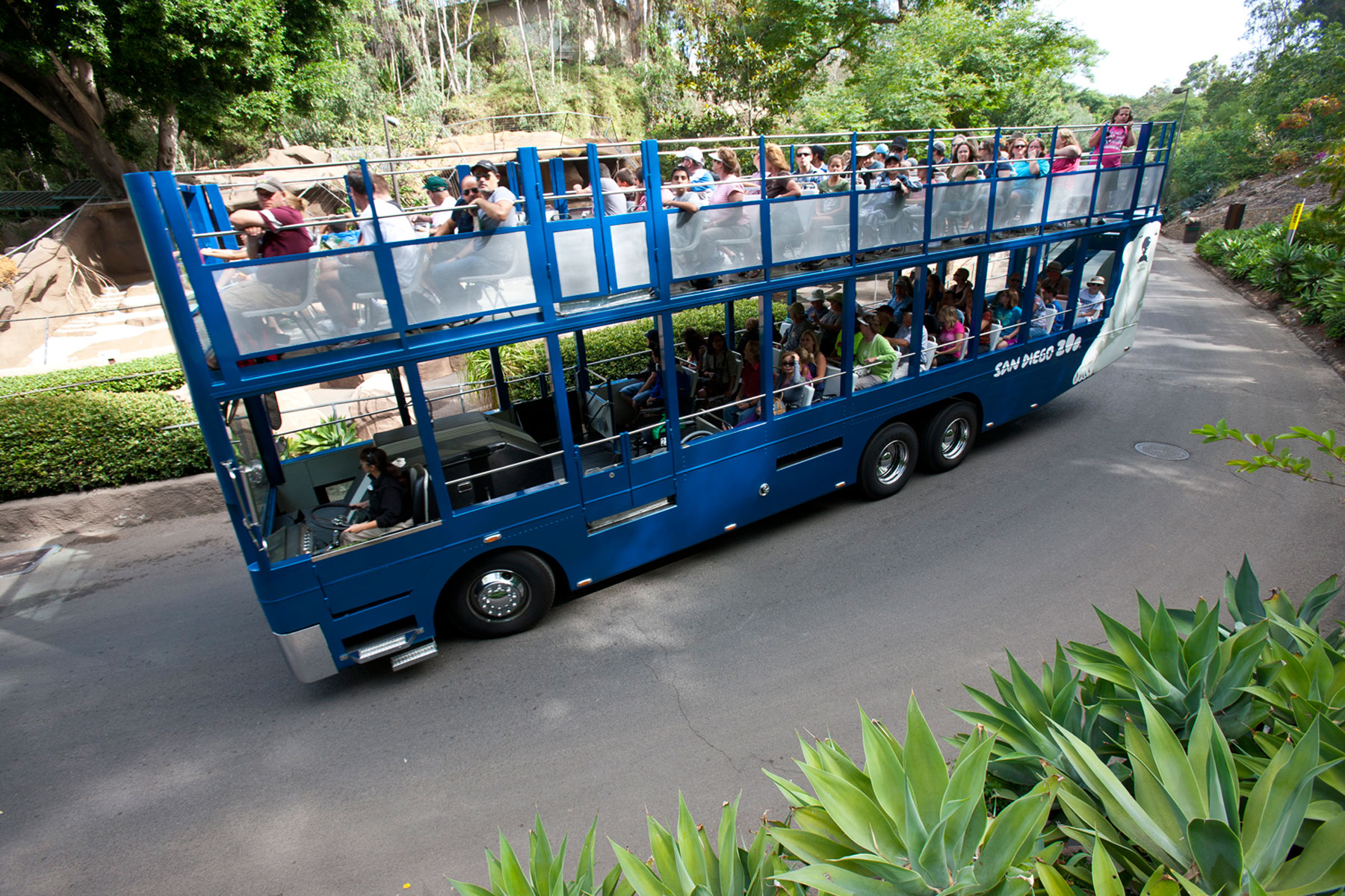 San Diego Zoo And Old Town Trolley Discount Package