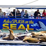 San Diego Seals passing Sea Lions