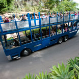 San Diego Zoo's Express Bus