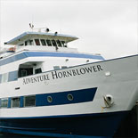 Hornblower Cruises Takes You On An Amazing Search For Seals, Blue Whales and Dolphins