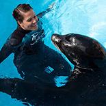 SeaWorld San Diego Kids Free