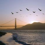 California Sunset Tour