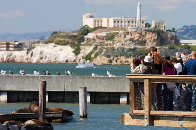Deluxe City Tour with Muir Woods & Sausalito