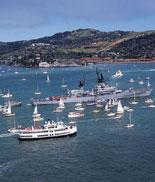The Hornblower Fleet in the Bay