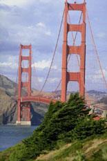 Cruise under the Golden Gate Bridge