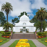 Hang Out In Golden Gate Park