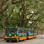 Old Town Trolley Tours of St. Augustine-2 day Ticket