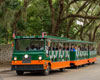 2 Day Old Town Trolley St Augustine Pass