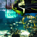 The St Augustine Aquarium is interactive, educational and FUN!