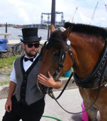 St Augustine Carriage Ride Tour