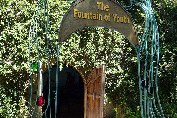 Image result for fountain of youth