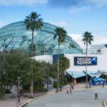 The Florida Aquarium awaits